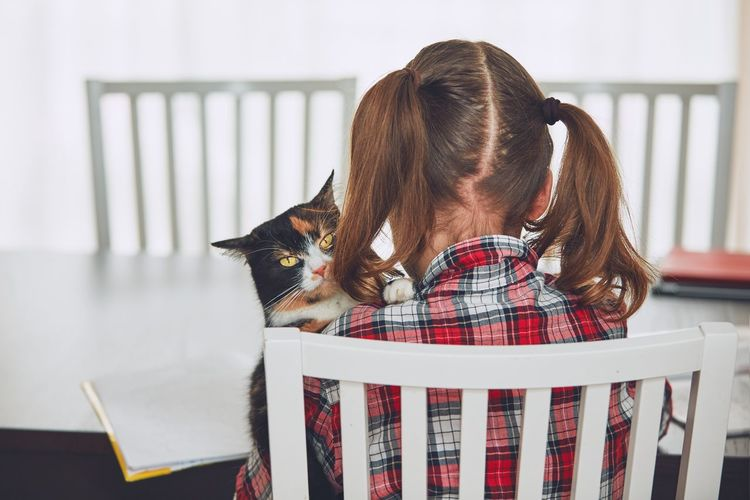 Learning at home. Little girl holding tabby cat and doing homework for elementary school. Children Contemplation Effort Home Innocence Learning Love Pensive Student Cat Child Childhood Concentration Cute Domestic Animals Education Embracing Girl Holding Homework Lovely Pets Real People Studying Trust