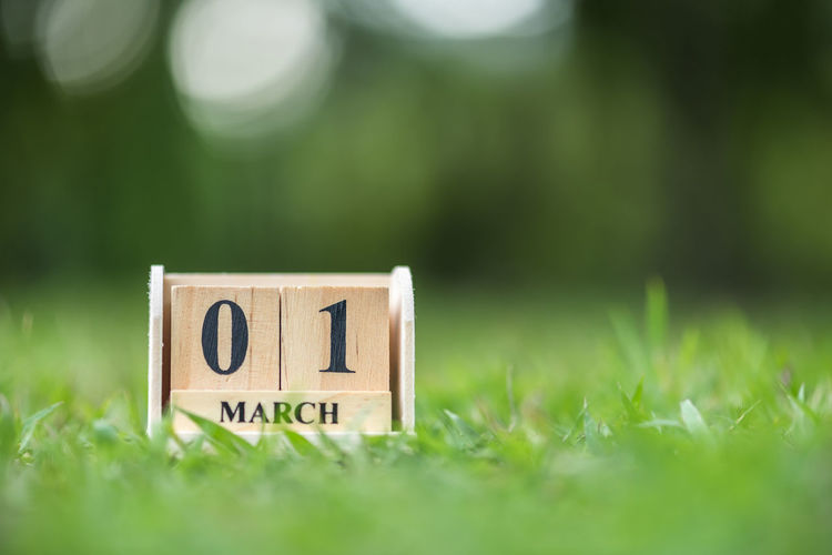 Close-up of wooden calendar on grassy field