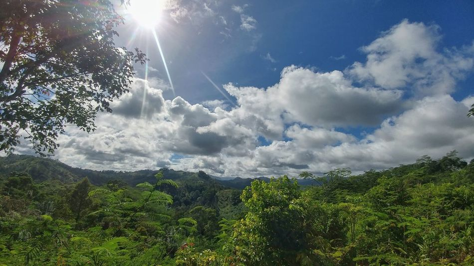 Cloud - Sky Nature Outdoors Beauty In Nature Sky Day Tree No People Scenics Sunlight Summer Growth Forest Power In Nature Freshness EyeEmNewHere Landscape Indonesia_photography Beauty In Nature Indonesia Scenery Baduy INDONESIA