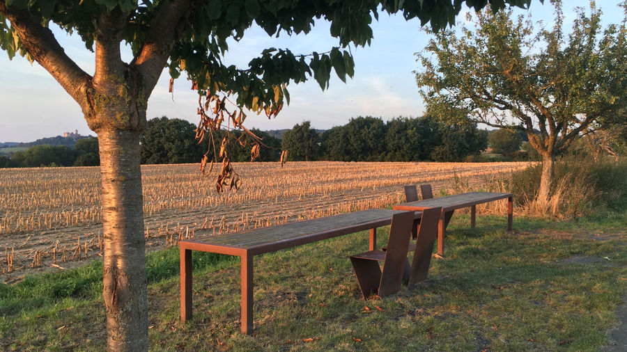 Wooden table by trees on field against sky