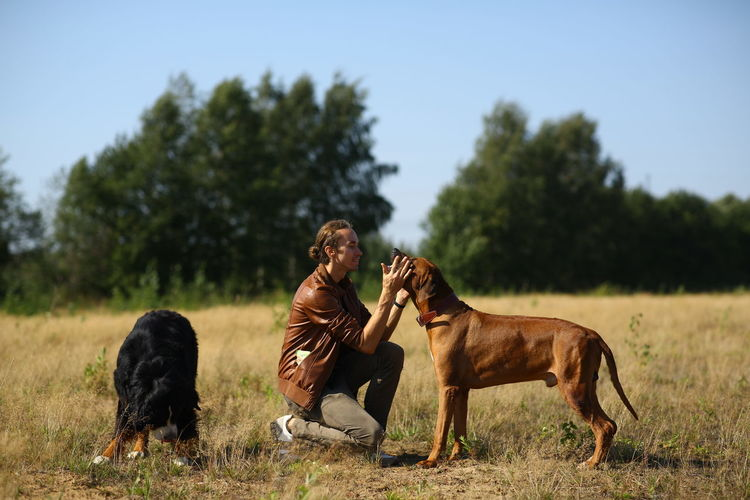 Man with dogs on land against clear sky