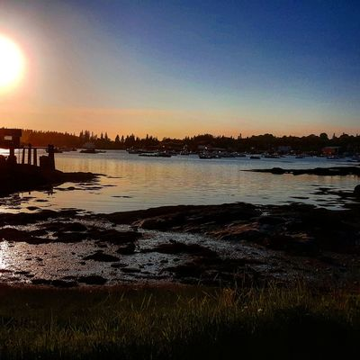 Hanging Out Taking Photos Check This Out That's Me Hello World Cheese! Relaxing Hi! Enjoying Life Moonlight Essence Of Summer Vinalhaven Maine Sunset Original Experiences