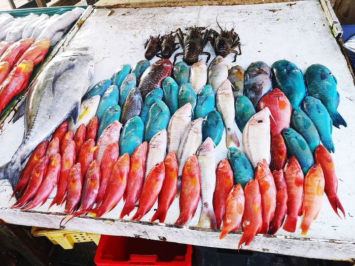 Market Seafood