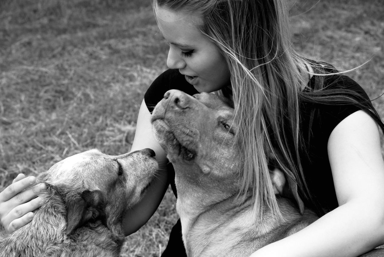 Close-Up Of Young Woman Embracing Dogs On Field