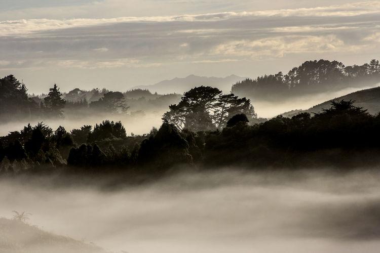 Misty landscape against the sky