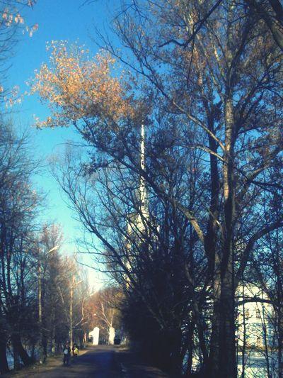 Discover Your City Church Park Yaroslavl