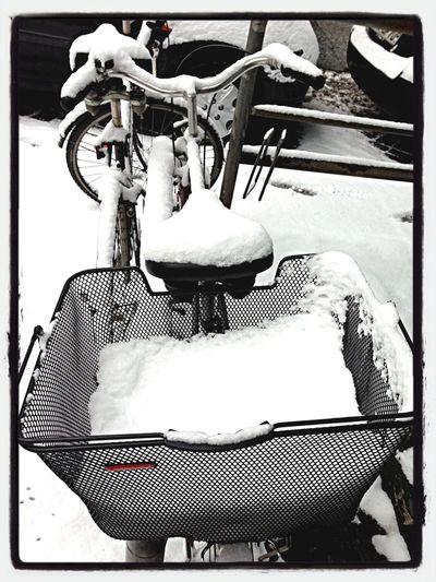 Snow Bikeporn