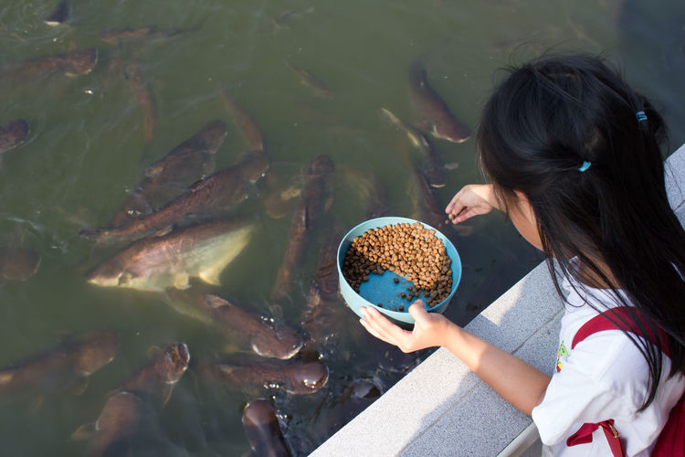 Asian girl Feeding fish Casual Clothing Childhood Close-up Day Food Food And Drink Freshness Girls High Angle View Holding Human Hand Leisure Activity Lifestyles Nature One Person Outdoors People Real People Standing Water Women
