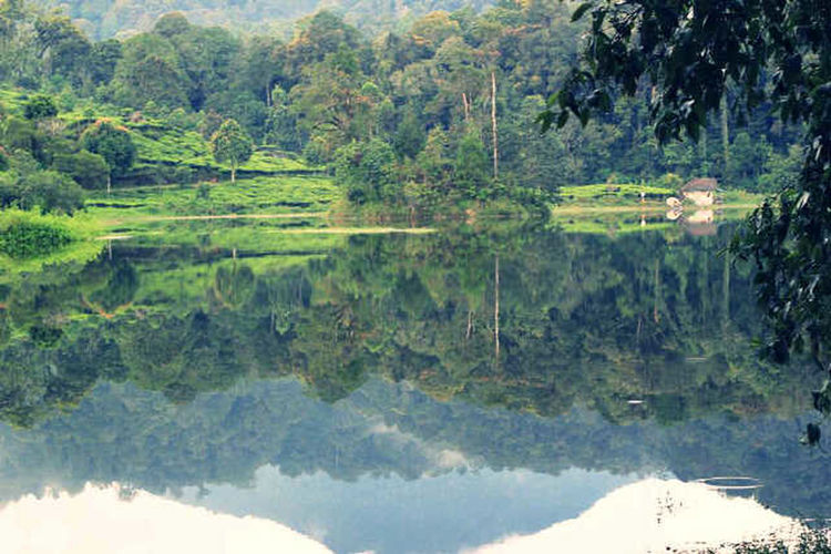 Situ Patenggang Lake