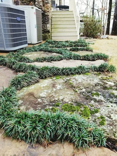 pathway Walkway Arkansas My Creation Mondo Flagstone Path Outdoors