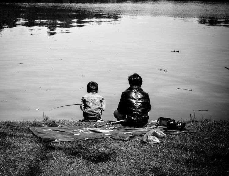 Father and son DaLatcity Dalat Nikon Animals In The Wild Beauty In Nature Bird Boys Childhood D7000 Day Grass Lake Lakeshore Leisure Activity Mammal Men Nature Outdoors People Real People Rear View Reflection Sitting Sonjewel Sonjewelphotographer Swan Swimming Togetherness Two People Vacations Water