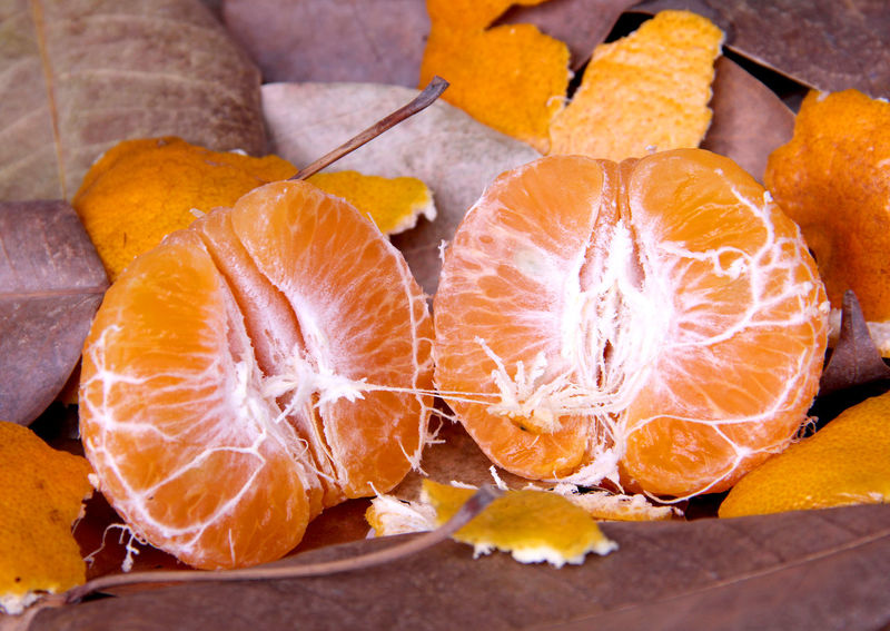 Orange fruit sweet and sour are on foliage in Thailand. Abundance Abundant Vitamin Orange Orange Tree Health Fruit Sour Sweet Fruit Health Healthcare Autumn Fruit Ripe Ripe Fruit Fresh Fruit Cross Section Healthy Eating Food Citrus Fruit Freshness SLICE Halved Blood Orange Food And Drink No People Indoors  Close-up Grapefruit Day