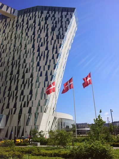 Nature Beauty In Nature Outdoors Grass Day Sky Plant No People Field Agriculture Lifestyles Fashion Arts Culture And Entertainment Holidays ☀ Happiness View BellaSky Suit Denmark Flag