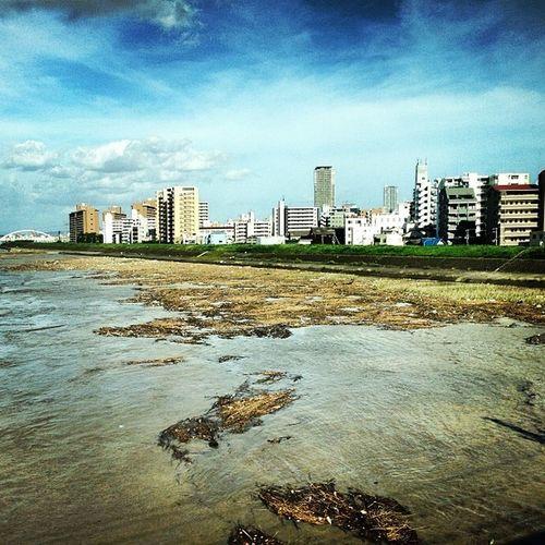 公園がなーい (ーー;) 淀川 台風