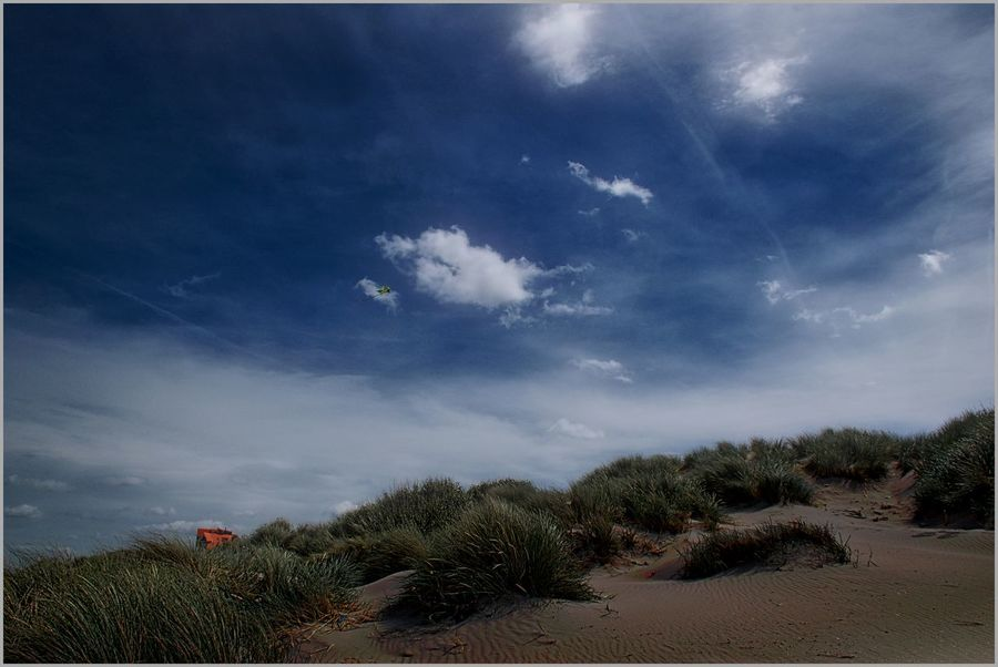 Dunes in Westende Dunes Flanders Beauty In Nature Blue Cloud - Sky Day Growth Landscape Nature No People Outdoors Sand Scenics Sky Tranquil Scene Tranquility Westende