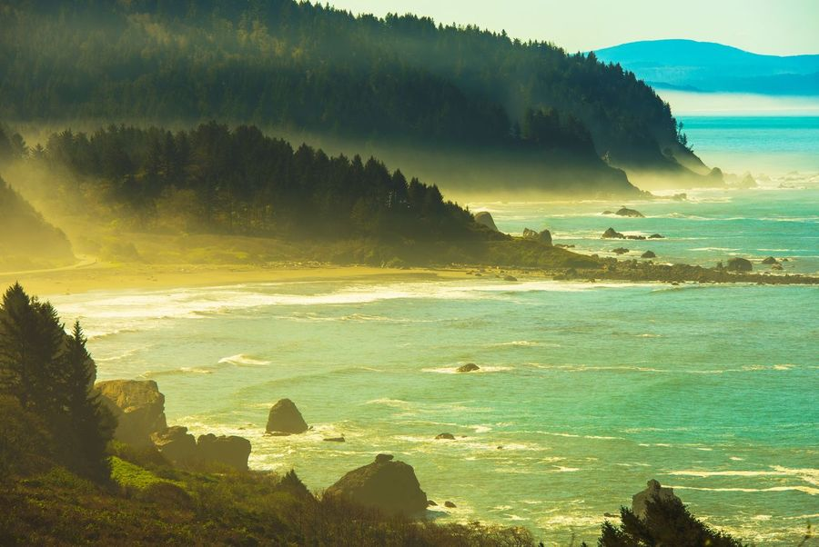 Northern California Pacific Ocean Coast. Klamath, California, USA. California Nature USA Beauty In Nature Coastal Day Foggy Landscape Mountain Nature No People Ocean Ocean Coastline Outdoors Scenics Sea Sea And Sky Shore Sky Sunlight Tranquil Scene Tranquility Tree Water Wave California Dreamin