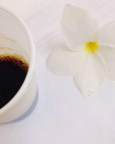 Café e flor ❤️ Coffee Time Coffee Tododia Flowers Florida First Eyeem Photo