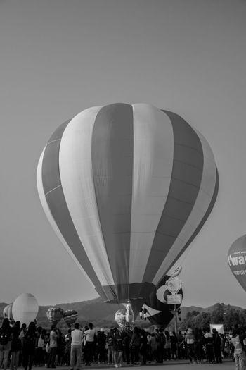 BalloonFiesta