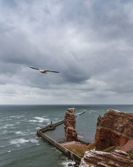 • Stormy Weather • Seascape Gannet Helgoland Helgoland_collection EyeEm Best Shots - Nature EyeEm Nature Lover Weather Stormy Weather Sea Water Sky Cloud - Sky Horizon Over Water Horizon Nature Bird Scenics - Nature No People Outdoors Day Animal Wildlife