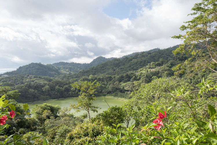 Beauty In Nature Built Structure Corcovado Corcovado National Park Costa Rica Day Growth Jungle Mountain Nature No People Outdoors Scenics Sky Tree