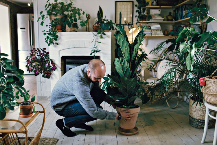 Rear view of man looking at potted plants