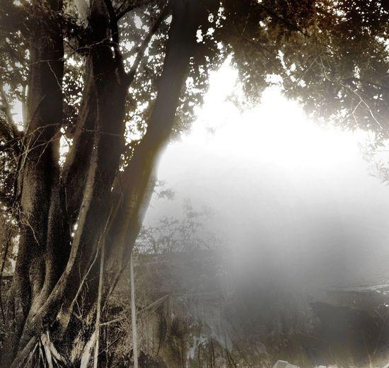 School Flow Landscape_Collection Eye4photography Landscape