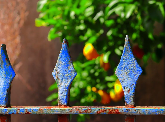 Close-up of multi colored decoration hanging on railing