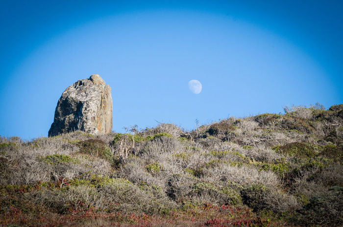 ©Amy Boyle Photography Beauty In Nature Blue Camping Cliff Countryside Day Growth Hill Horizon Over Land Lens Flare Moon Moon Moonlight Nature No People Non Urban Scene Non-urban Scene Outdoors Remote Scenics Sky Solitude Tranquil Scene Tranquility California Dreamin