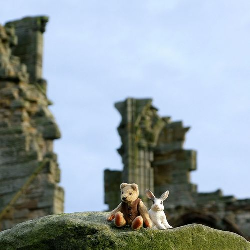 Rock-climbed the ruins now resting with Rabbit.... Sandstone Outdoors Tiny Teddy Bear Tiny Rabbit Toys Cute No People Day Abbey Ruins Stonework Focus On Foreground Low Angle View Just For Fun Close-up Teddy Bear Teds Adventure Smile Laugh Funny Lighthearted Dont Take Life So Serious