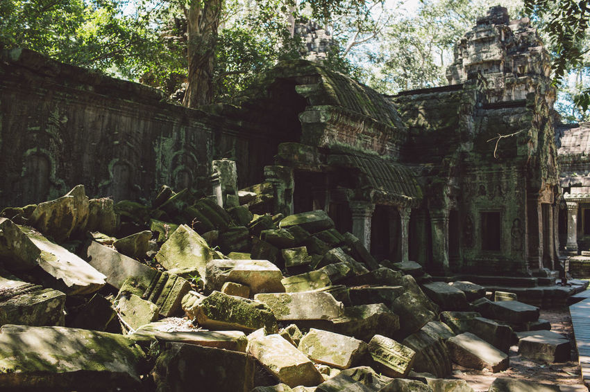 Siem Reap Cambodia Angkor Architecture Built Structure History The Past Tree Religion Belief Ancient Building Exterior Plant Day Place Of Worship Old Building Nature Spirituality Old Ruin Travel Destinations No People Outdoors Ancient Civilization Archaeology Architectural Column Ruined