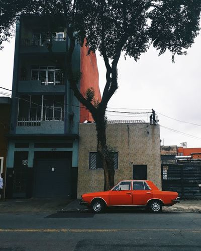 Cars on road by buildings in city