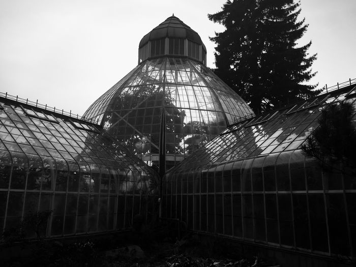 Victorian Conservatory Seymour Conservatory Architecture Built Structure Low Angle View No People Day Building Exterior Sky
