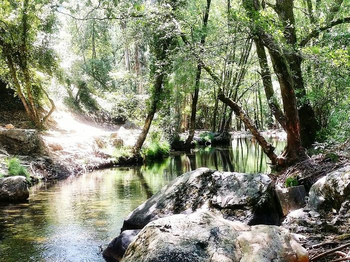 Fragas De Sao Simao Portugal Water Nature Beauty In Nature
