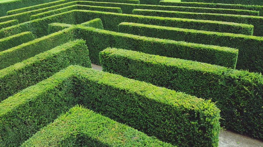 High angle view of steps on grass