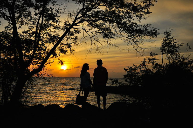 Adult Adults Only Beach Beauty In Nature Bonding Men Nature Only Men Outdoors People Real People Sea Silhouette Sky Sun Sunset Togetherness Tree Two People Water
