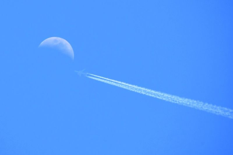 Contrails Contrail Airplane AirPlane ✈ Moon Moon Shots Blue Blue Sky Sky Skyporn Sky_collection Skylovers 月 飛行機雲 昼間の月 The Great Outdoors With Adobe 今日はすーーーっごい良い天気で気持ち良かった☀️(o^^o)