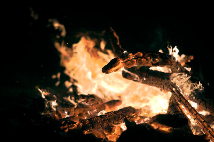 Burning firewood at night Burning Dark Flames Isolated Wood Backgrounds Black Color Close-up Fire Fireplace Firewood Heat - Temperature Monochrome Night No People Orange Color Texture