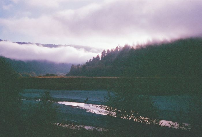 Lost In The Landscape Scenics Beauty In Nature Nature Water Mountain Tranquility Tranquil Scene No People Sky Lake Outdoors Cloud - Sky Day Tree Landscape Mountain Range Forest Fog Foggy Morning 35mm Analogue Photography Mist Northern California Early Morning
