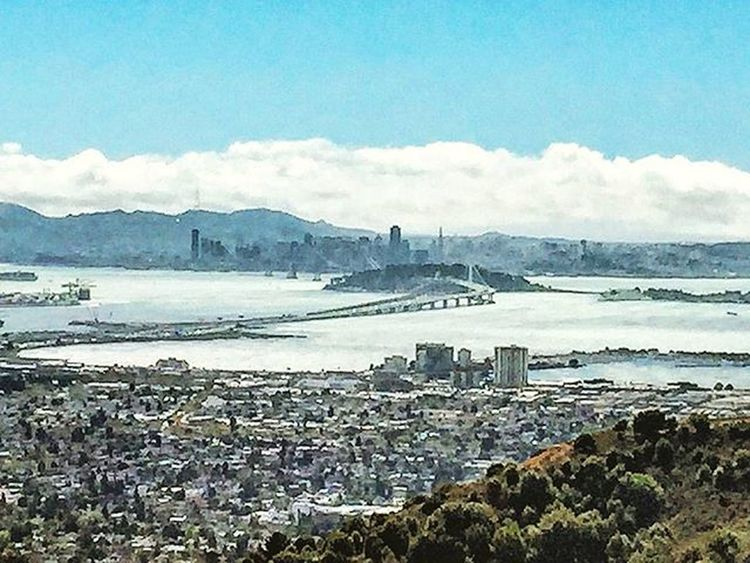 The City of Sanfrancisco from Berkeley Hills Notapainting Instagrammers Igers Tagsforlikes Instalove Instamood Instagood Followme Follow Comment ShoutOut Androidography Filter Filters Contests Photo Instadaily Photooftheday Pics Insta Picoftheday bestoftheday instadaily instafamous popularpic popularphoto sf