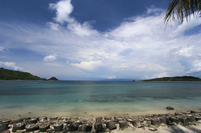 Landscape Water Sea Tree Beach Awe Beauty Sand Blue Tourist Resort