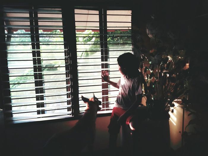 People looking through window