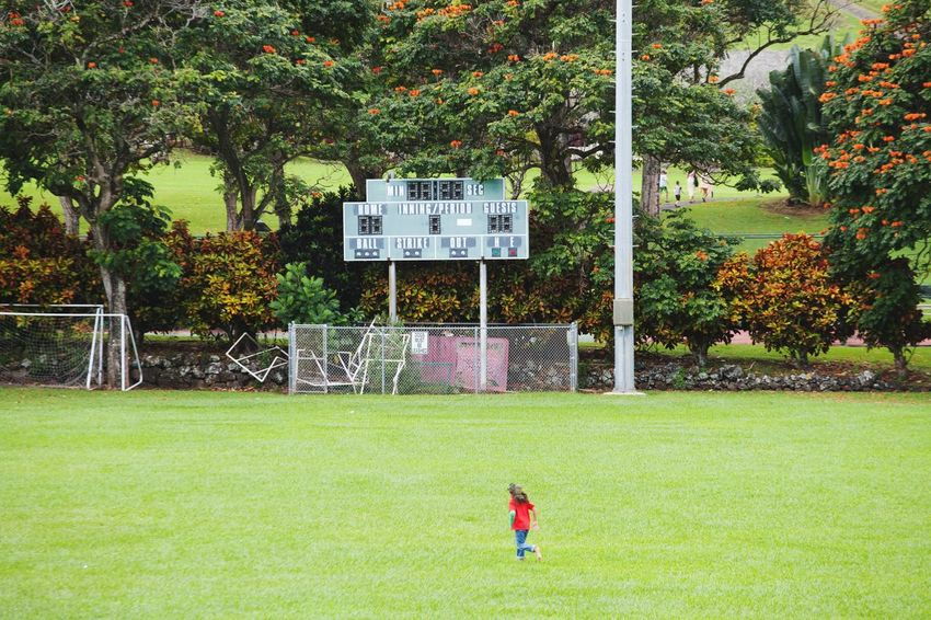 Scoreboard Baseball Field Hawaii Life Hana Grass Sport Playing Tree Day Outdoors Green Color Leisure Activity Childhood One Boy Only Playing Field Real People Growth People Boys