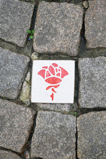 Rosenroute Hildesheim Sightseeing City Cobblestone Directly Above Footpath Germany High Angle View No People Paving Stone Plaque Rose - Flower Rosenroute Sidewalk Stone Symbol Tourism
