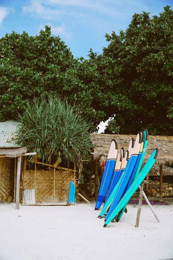 Surf shop in