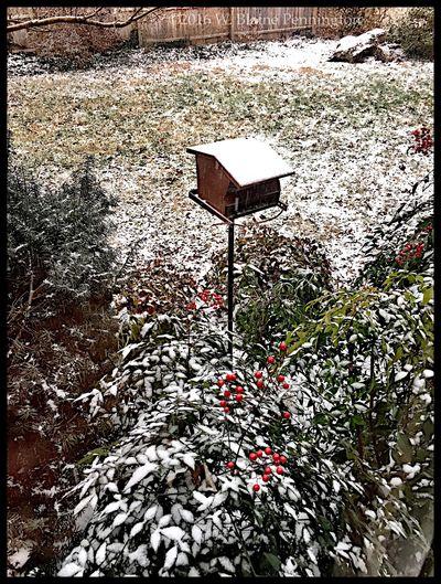 Just beginning... Snow ❄ Epic Snow