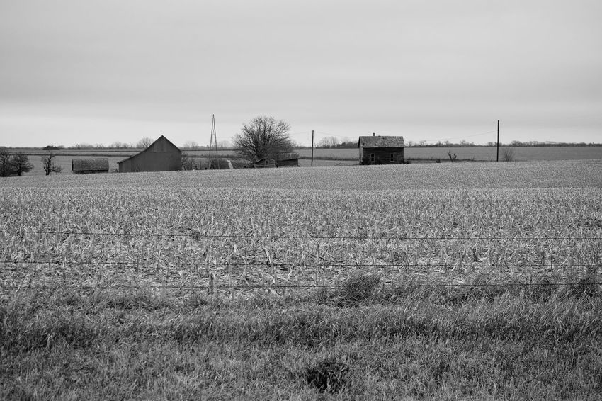 Visual Journal February 2017 Thayer County, Nebraska Agriculture America Desaturated EyeEm Best Shots EyeEm Gallery Farm Farm Life Getty Images Landscape MidWest Nebraska No People Off The Beaten Path Oregon Trail Photo Diary Rural America Rural Exploration Rural Landscape Rural Scene Rural Scenes Rurex Small Town Stories Social Issues Storytelling Visual Journal