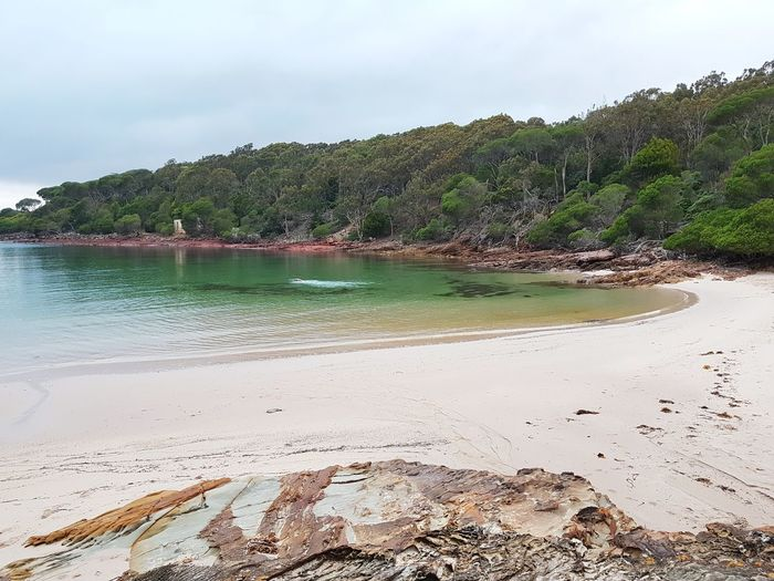 Ben Boyd National Park Ben Boyd National Park Beach Nsw Sapphire Coast New South Wales  Bittangabee Bay Australia Bay Sunrise Beach Sand Sea Water Nature Coastal Feature Scenics