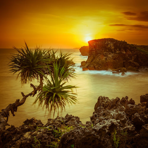 High angle view on high rocky coastline during sunset Sunset_collection Beach Beauty In Nature Day High Angle View High Terrain Horizon Over Water Nature No People Orange Color Outdoors Rock - Object Scenics Sea Sky Sun Sunset Tranquil Scene Tranquility Water Yesteryear Filter Yogjakarta