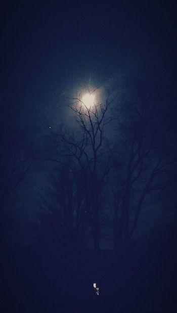 Moonlight Country Spirit Spring2016🌾