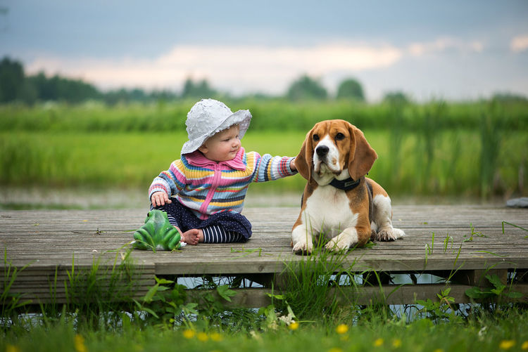 Babygirl playing with beagle dog Baby Fashion Friends Kids Animal Themes Babygirl Beagle Childhood Day Dog Domestic Animals Friendship Full Length Grass Lake Mammal Nature One Animal One Person Outdoors People Pets Real People Sitting Sky